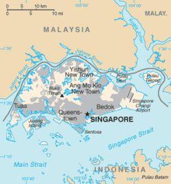Singapore isola felice 2