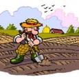 """Da Fermo a Trento, da Viterbo a Ercolano, da Milano a Taranto, da Monselice a Catania e un poco in tutta Italia, aprono i """"mercati del contadino"""" per acquistare arance, […]"""