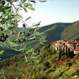 Nella provincia di Imperia, praticamente nel paese di Chiusanico, Tiziana e Riccardo Gautelli hanno fondato un singolare museo creato all'interno di un vecchio frantoio del 600. I fondatori fanno capo […]
