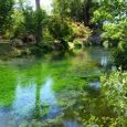 Vicino Cisterna di Latina, al confine con Norma e Sermoneta, in una zona un tempo paludosa, troviamo un parco all'inglese detto oasi di ninfa. Il giardino all'inglese, risistemato da Gelasio […]
