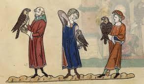 La storia della falconeria