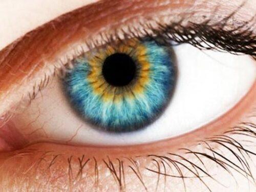 L'iridologia, cos'è, perché è importante